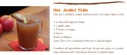 in the Mix Magazine - Hot Mulled Cider with Bacardi Superior Rum. By Tim McCaffery, Chief Mixologist at Lime Tree Cove.