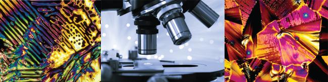 Molecular Photography - www.bevshots.com - Michael W. Davidson - Florida State Research Foundation