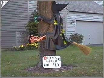 Funny Halloween Photos