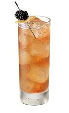 berry spice - chambord vodka cocktail recipe