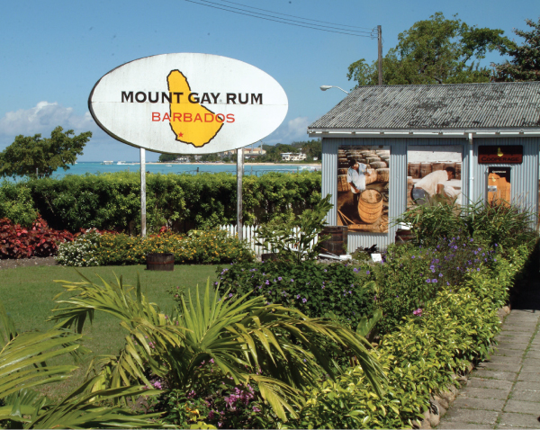 mount gay rum punch by tony abou-ganim