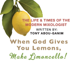 tony abou-ganim - make limoncello