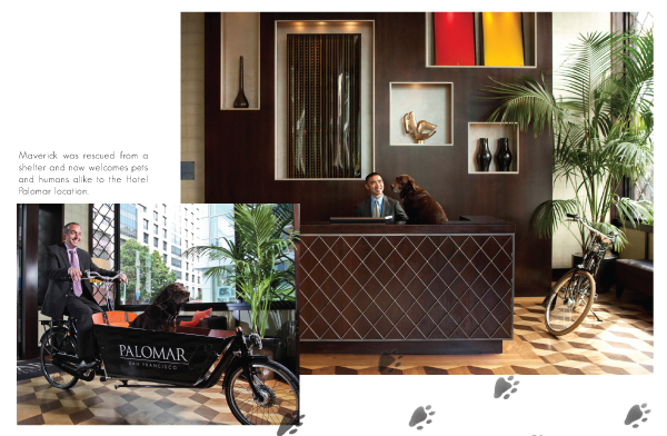 Hotel Palomar San Francisco Pet Friendly Hotels In The Mix Magazine