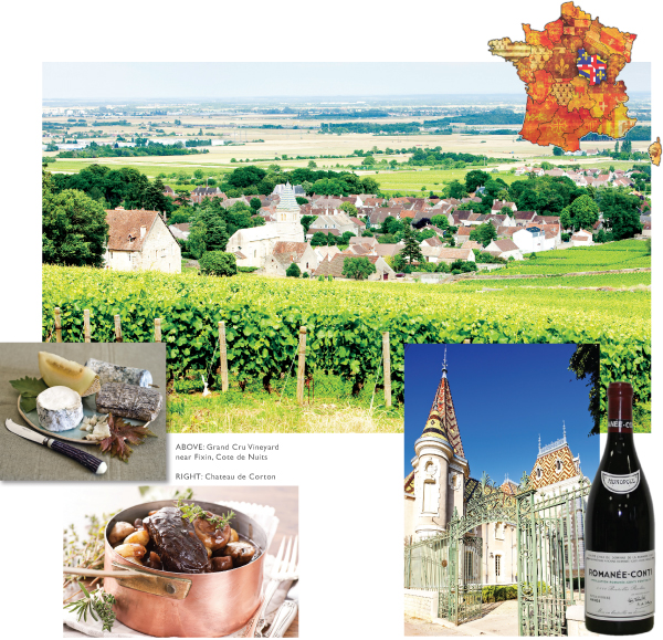 regional food and wines of france