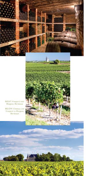 bordeaux wine region of france - by edward korry