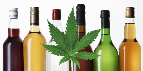 marijuana versus alcohol
