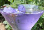 petal pusher margarita recipe
