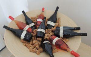 wine - Schiaccianoci Negroamaro del Salento