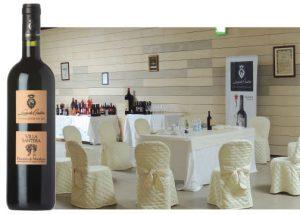 wine - Villa Santera Primitivo di Manduria DOC 2011