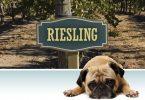 Reisling-1