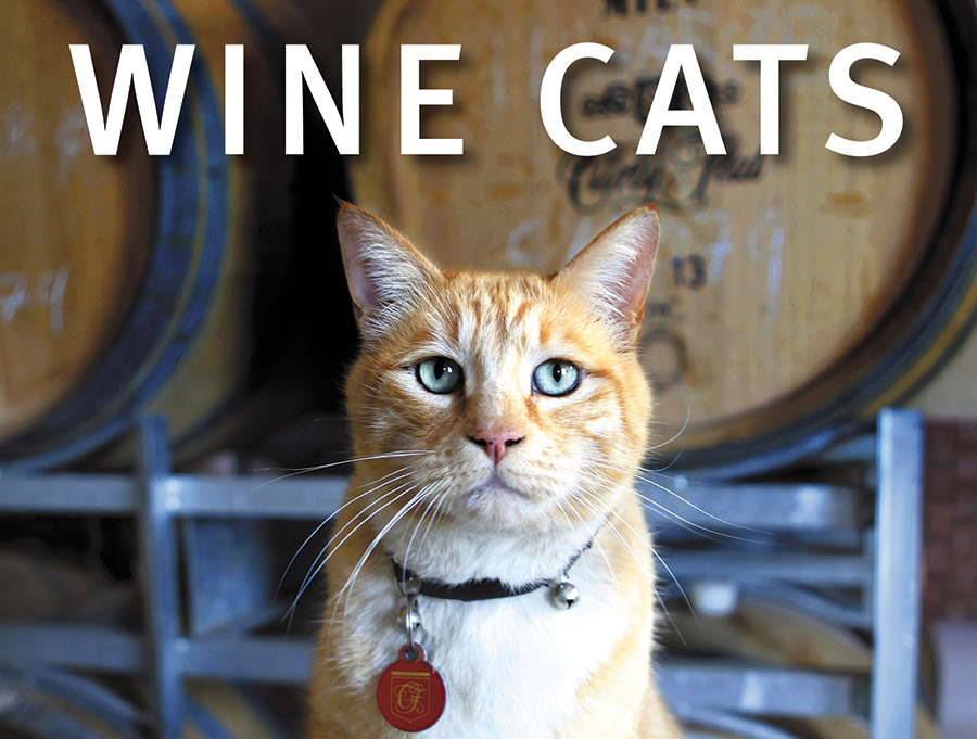 Wine-cats-home