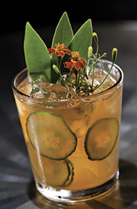 Pimm's lends spice notes and sophistication to War of the Roses, by head bartender Mike Ryan at Chicago's Sable Kitchen & Bar, when combined with Chase Elderflower, gin, lime juice, simple syrup, Peychaud's Bitters and fresh mint. Courtesy of Sable, Chicago.