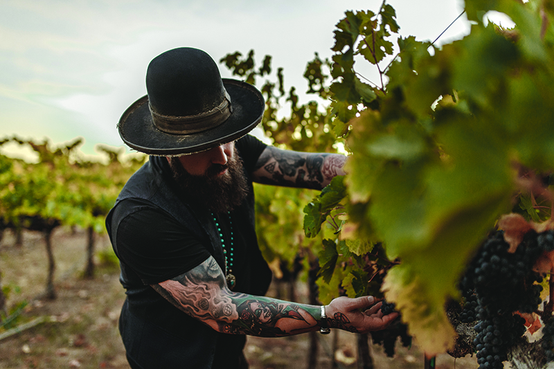 zac brown in vineyards