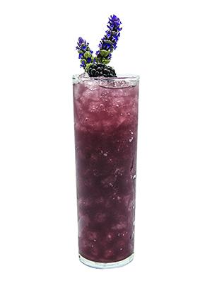 monin-Blackberry Lavender Shrub
