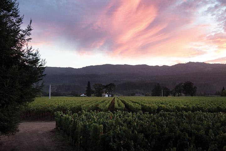 Sunset at Raymond Vineyards