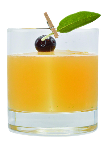 monin fall coctails